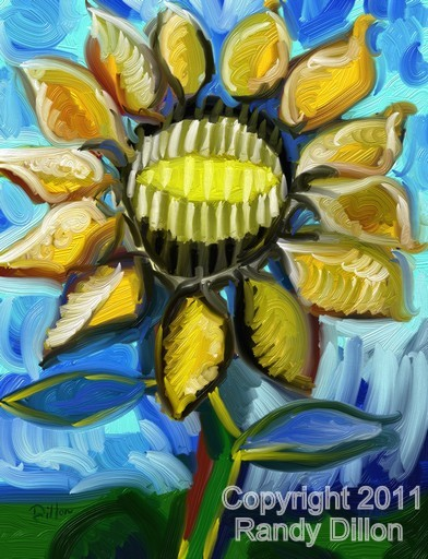 Fine Art Print - Sunflower