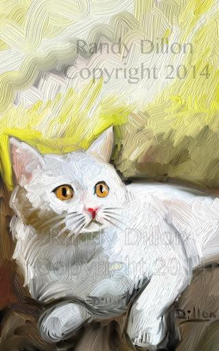 Fine Art Print - Cat in April